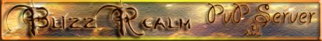 Blizz Realm Banner