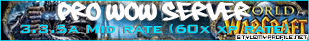 Pro WoW 3.3.5a Banner